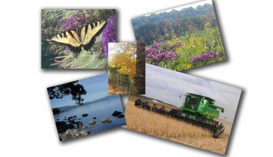 photo prints example1